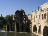 Mosque, Water Wheel on the Orontes River, Hama, Syria, Middle East Photographic Print by Christian Kober