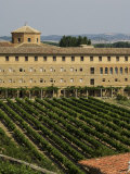 Vineyard and Monastery, Olite, Navarra, Euskadi, Spain Photographic Print by Christian Kober