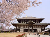 Cherry Blossoms, the Great Buddha Hall, Todaiji Temple, Nara, Honshu Island, Japan Photographic Print by Christian Kober