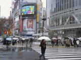 Street Scene in the Rain, Shinjuku, Tokyo, Japan Photographic Print by Christian Kober