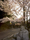 Buddha Statue, Ishiteji Temple, Ehime Prefecture, Japan Photographic Print by Christian Kober