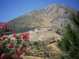 View from Mycenae, Peloponnese, Greece Fotografisk tryk af Oliviero Olivieri