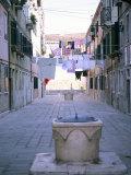 Castello, Venice, Veneto, Italy Photographic Print by Oliviero Olivieri
