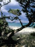 Southeast Coast, Island of Sardinia, Italy, Mediterranean Fotografisk tryk af Oliviero Olivieri