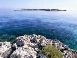 Favignana Island, Egadi Islands, Sicily, Italy, Mediterranean Photographic Print by Oliviero Olivieri