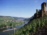 Gravenburg Castle, River Mosel, Rhineland Palatinate, Germany Photographic Print by Oliviero Olivieri