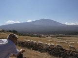 Shepherd, Mount Etna, Sicily, Italy Photographic Print by Oliviero Olivieri