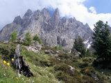 Sassolungo Range, 3181M, Val Gardena, Dolomites, Alto Adige, Italy Photographic Print by Richard Nebesky