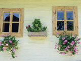 Windows of One of Unique Village Architecture Houses in Vlkolinec Village, Velka Fatra Mountains Photographic Print by Richard Nebesky