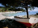 Thassos (Thasos), Aegean Islands, Greek Islands, Greece Fotografisk tryk af Oliviero Olivieri