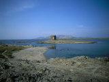 View of Asinara Island, Alghero Stintino, Sardinia, Italy Fotografisk tryk af Oliviero Olivieri