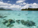 Bora-Bora, Leeward Group, Society Islands, French Polynesia Islands Photographie par Sergio Pitamitz