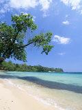 San San Beach, Port Antonio, Jamaica, West Indies, Central America Photographie par Sergio Pitamitz