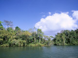 Island on Gatun Lake, Soberania Forest National Park, Panama Canal, Panama, Central America Photographic Print by Sergio Pitamitz