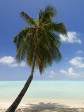 Bora-Bora, Leeward Group, Society Islands, French Polynesia Islands Photographic Print by Sergio Pitamitz