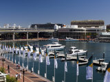 Darling Harbour, Sydney, New South Wales, Australia Photographic Print by Sergio Pitamitz
