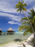 Kia Ora Resort, Rangiroa, Tuamotu Archipelago, French Polynesia Islands Photographic Print by Sergio Pitamitz