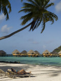 Pearl Beach Resort, Bora-Bora, Leeward Group, Society Islands, French Polynesia Photographic Print by Sergio Pitamitz