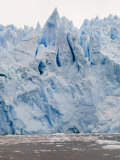 Garibaldi Glacier, Darwin National Park, Tierra Del Fuego, Patagonia, Chile, South America Photographic Print by Sergio Pitamitz