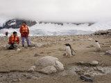 Tourists Looking at Gentoo Penguins, Neko Harbor, Gerlache Strait, Antarctic Peninsula Photographic Print by Sergio Pitamitz