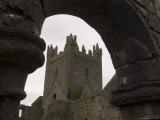 Jerpoint Abbey, County Kilkenny, Leinster, Republic of Ireland (Eire) Photographic Print by Sergio Pitamitz