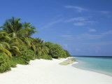 Soneva Fushi Resort, Kunfunadhoo Island, Baa Atoll, Maldives, Indian Ocean Photographic Print by Sergio Pitamitz