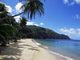 Castara Bay, Tobago, West Indies, Caribbean, Central America Photographic Print by Yadid Levy