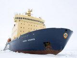 Russian Icebreaker, Kapitan Khlebnikov in Pack Ice, Weddell Sea, Antarctica, Polar Regions Photographic Print by Thorsten Milse