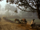 Village Scene, Vaishali, India Photographie par James Gritz