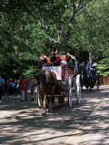 Horse Drawn Carriage in Central Park, Manhattan, New York, New York State, USA Photographic Print by Yadid Levy