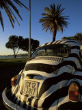 Back of a Beetle Car Painted in Zebra Stripes, Cape Town, South Africa, Africa Photographic Print by Yadid Levy