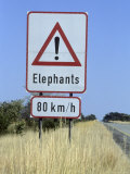 Sign, Elephants Crossing the Road, Caprivi, Namibia, Africa Photographic Print by Thorsten Milse