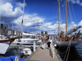 Constitution Day on May 17th, at Aker Brygge, Oslo, Norway, Scandinavia Photographic Print by Kim Hart