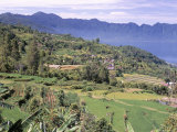 Rice Terraces on the Eastern Shore of Maninjau, Sumatra, Indonesia Photographic Print by Robert Francis