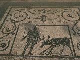 Mosaic Trade Emblems, Piazzale Delle Corporazioni, Ostia Antica, Lazio, Italy Photographic Print by Christina Gascoigne
