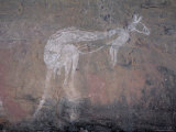 Painting of a Kangaroo at Nourlangie Rock, Australia Photographic Print by Robert Francis