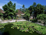 Ornamental Lake at the Old Palace of the Raja of Karangasem, Amlapura, Bali, Indonesia Photographic Print by Robert Francis