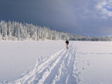 Cross Country Skiing, Abortjern, Oslomarka (Baerumsmarka), Olso, Norway, Scandinavia Photographic Print by Kim Hart