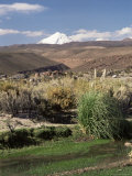 Stream in the Atacama Desert, with Volcan Putana on Horizon, San Pedro De Atacama Region, Chile Photographic Print by Robert Francis