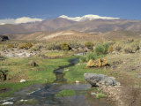 Stream in the Atacama Desert with the Andes on the Horizon, San Pedro De Atacama Region, Chile Photographic Print by Robert Francis