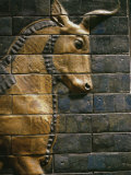 Babylonian Wall Tiles, Babylon, Iraq, Middle East Photographic Print by Christina Gascoigne