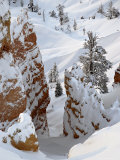 Snow, Trees, and Hoodoos, Bryce Canyon National Park, Utah, USA Photographic Print by James Hager