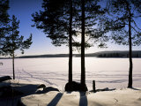 Lake Maridal (Maridalsvannet), Oslo's Reservoir, Oslo, Norway, Scandinavia Photographic Print by Kim Hart