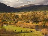 Murray River, Near Towong, Victoria, Australia Photographic Print by Jochen Schlenker