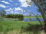 The Yellow Water Wetlands on Floodplain of the Alligator River, Kakadu National Park, Australia Photographic Print by Robert Francis