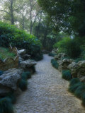Humble Administrator's Garden, Unesco World Heritage Site, Souzhou (Suzhou), China Photographic Print by Jochen Schlenker