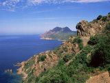 Golfe De Galeria, Corsica, France, Mediterranean Photographic Print by Yadid Levy