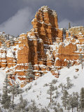 Red Rock Formations, Red Canyon, Dixie National Forest, Utah, USA Photographic Print by James Hager