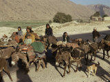 Migration of the Qashgai Tribe, Iran, Middle East Photographic Print by Sybil Sassoon