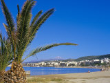 Palm Tree and Rethymo Beach, Rethymno (Rethymnon), Island of Crete, Greece, Mediterranean Photographic Print by Marco Simoni